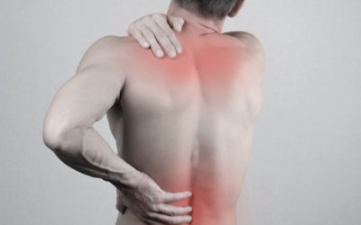 Stop the Pain: Back Pain